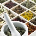 chinese-herbs2-150x150.jpg