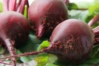 food vegetables beets
