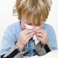 child allergies sneeze