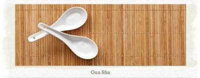 PageLines- guasha.jpg