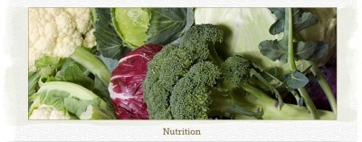 PageLines- yinova-nutrition.jpg