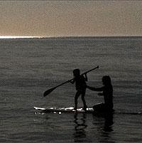yinova-stock0-surf