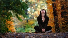 Autumn and the art of letting go