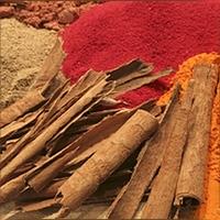 yoc-spices-sq