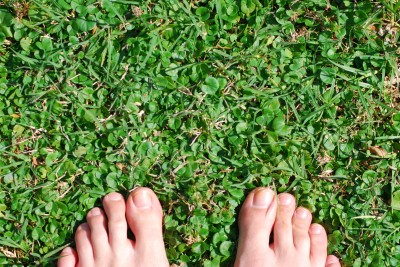 male toes on grass
