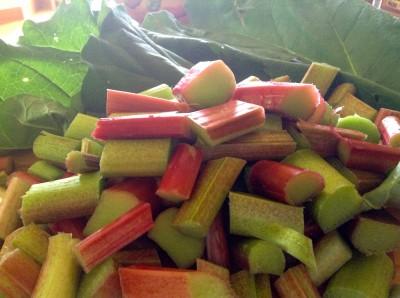 Stewing rhubarb