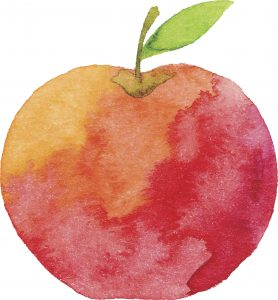 watercolor image of an apple