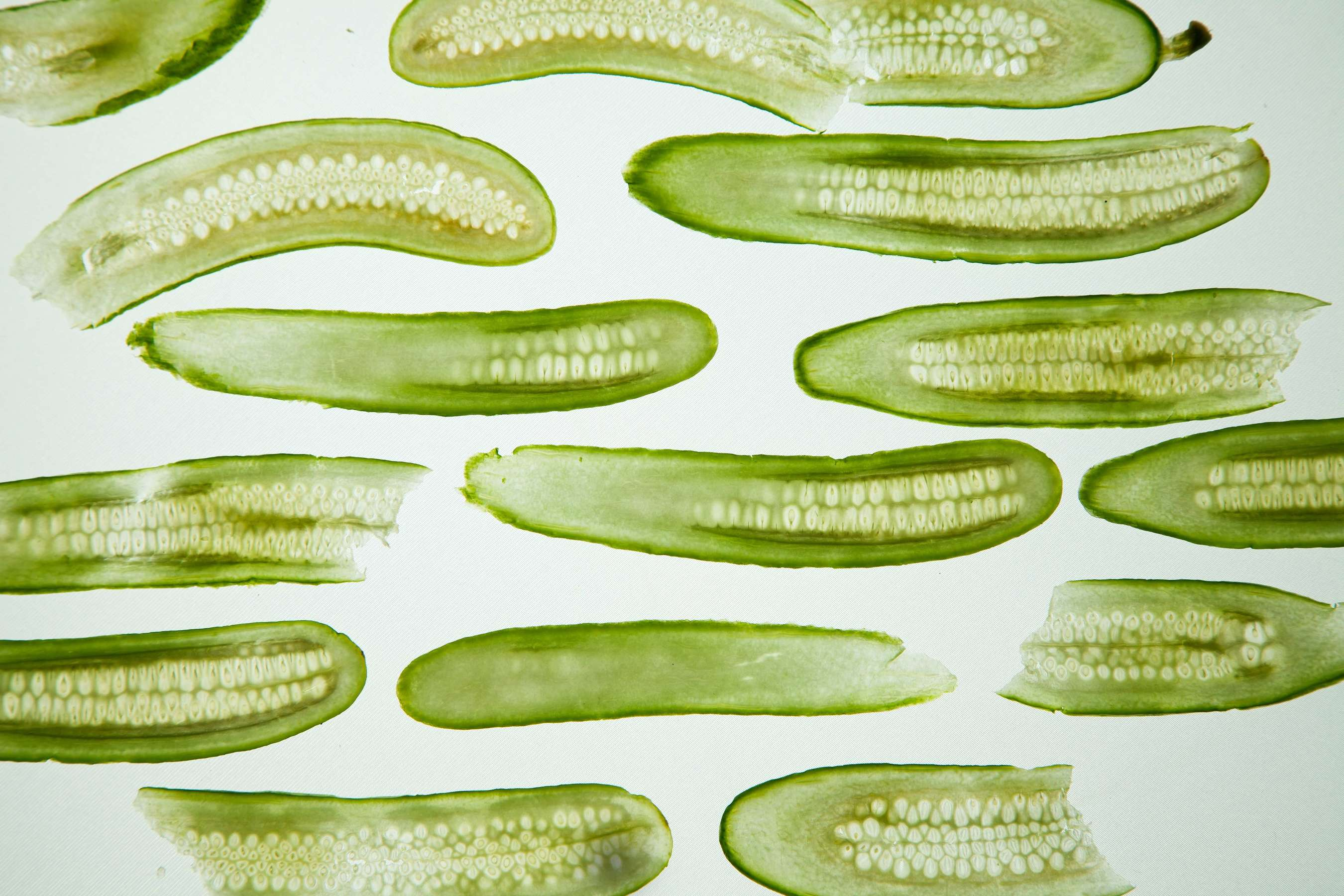 Cross sections of a cucumber, ready to be pickled