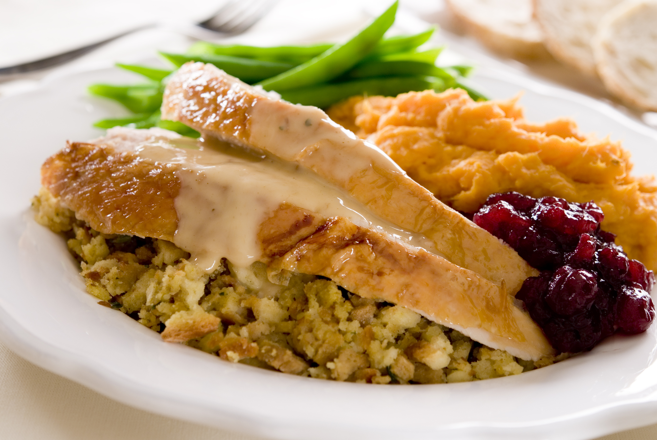 A Thanksgiving Digestive Survival Guide