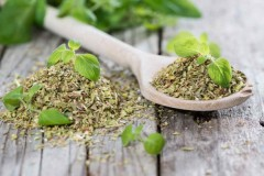The Healing Power of Oregano