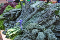 Varieties of Kale for Every Meal