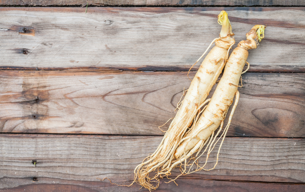 Ginseng: Getting to the Root