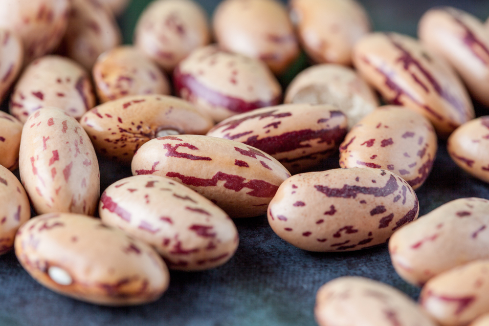 Steve Sando, of Rancho Gordo, Shows us his Favorite Bean Recipe!
