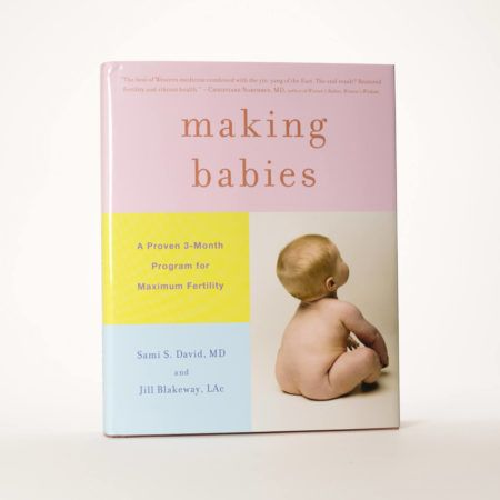 The Making Babies Book